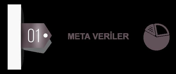 Analizli Kamera Meta Veriler