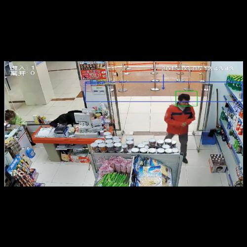 Dahua Analizli Kameralar ile Kişi Sayılır